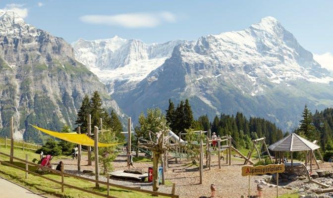 Grindelwald Alpine Playground Bort
