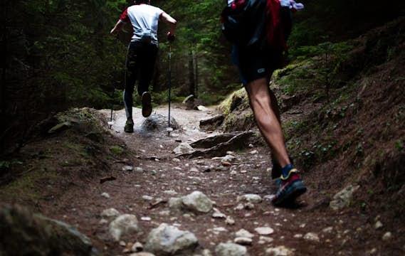 Trail running | Grindelwald