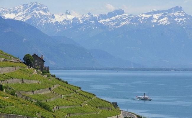 Schifffahrt von Lausanne nach Chillon   3 Stunden Weinberge des Lavaux